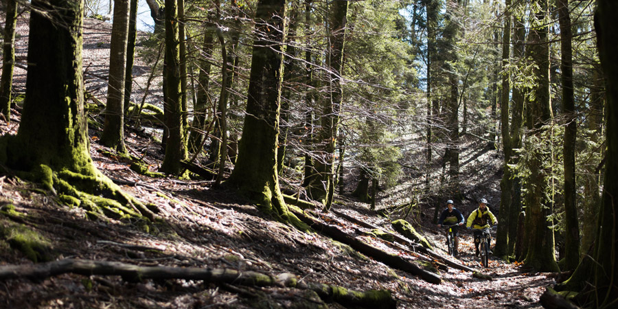 Sightseeing MTB tour in Basque Country