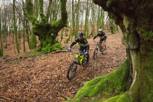 Basque-Country-Cycling-Bewitched-forest