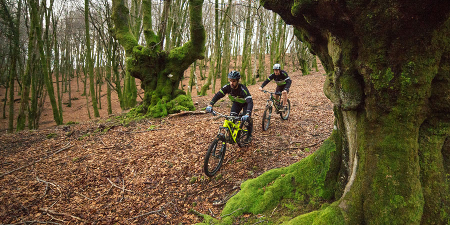 Cycling in Basque Country through bewitched forests