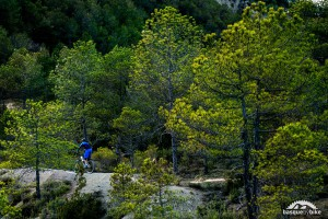 Enduro mtb singletracks in the Pyrenees