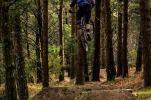 Mountain bike tours in Spain
