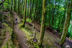 Mountain bike tours in Spain