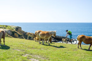 basque biking tours